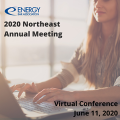 2020_Northeast_Chapter_Annual_Meeting_Square