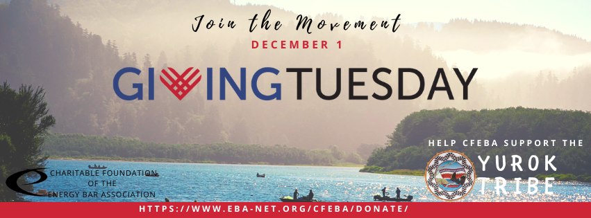 CFEBA #GivingTuesday Campaign